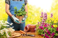 Gefahr aus dem Garten? So vermeiden Sie Unfälle