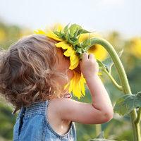 Kind in Sonnenblume