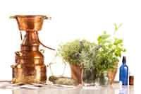 Destillierapp.für äther.Öle