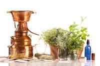 Ätherische Pflanzenöle selbst destillieren