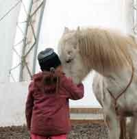 Aus Begegnungen mit Tieren lernen