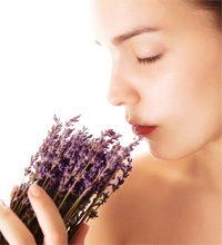 Frau riecht an Lavendelstrauß