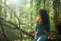 Frau sitzt im Wald auf Altholz