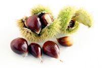 Gesunder GeNUSS: Nüsse und Samen