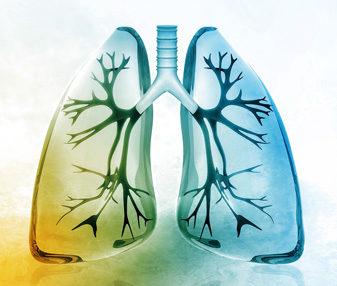 Wie fit ist Ihre Lunge?