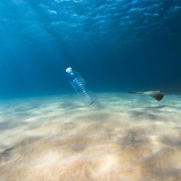 """""""Plastikfasten"""" – der Umwelt zuliebe"""