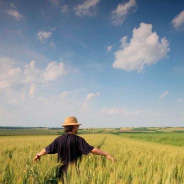 Siegel mit Profil: Was Bioware sicher macht