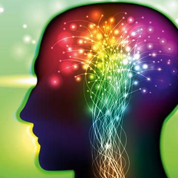 Nervensystem: Wissen Sie Bescheid?