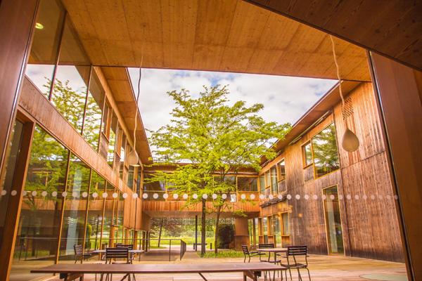 Heilende Architektur hilft der Genesung
