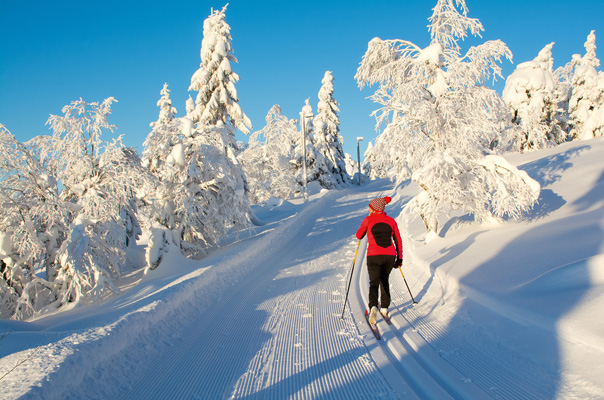 Freud und Leid beim Wintersport