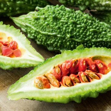 Bittermelone unterstützt den Stoffwechsel